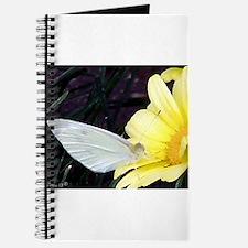 Butterfly on Yellow Flower Journal