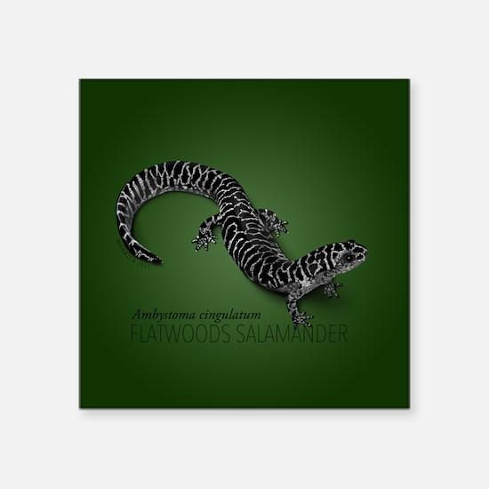 Flatwoods Salamander On Green Sticker