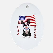 USA Proud - Oval Ornament