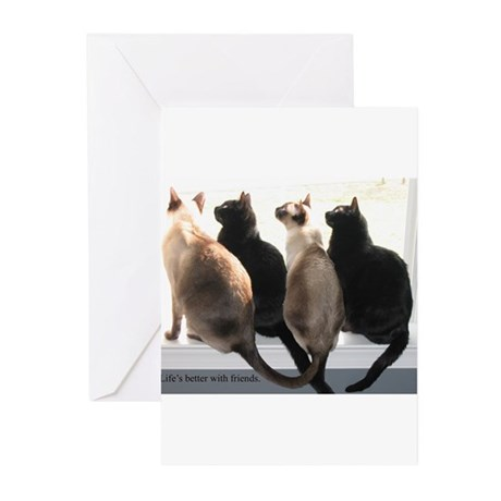 Bird Watching With Cat Friends Greeting Cards (Pk