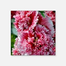 "Cute Hollyhock Square Sticker 3"" x 3"""