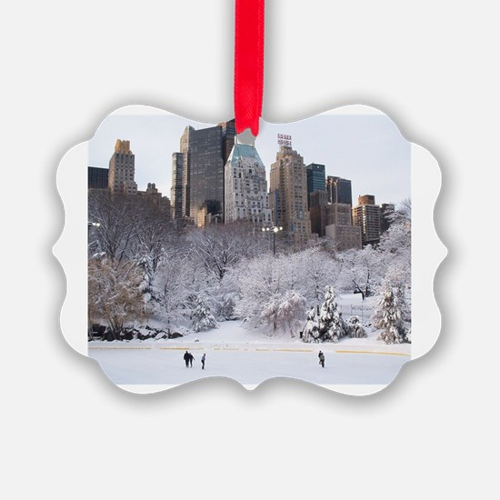 Cute Ice rink Ornament