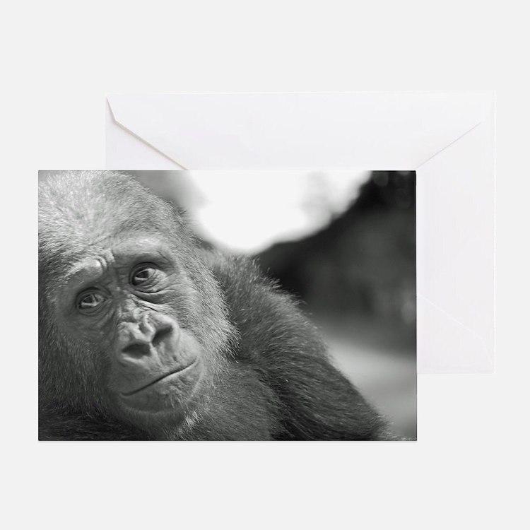 Cute Bronx zoo Greeting Card