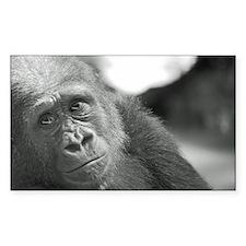 Cute Bronx zoo Decal