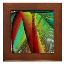 Stained Glass Window Framed Tile