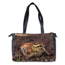 Grouse Chick Diaper Bag