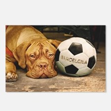 Funny Dogo Postcards (Package of 8)