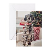 English setter christmas Greeting Cards (20 Pack)