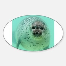 Seal 001 Decal