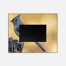 Tufted Titmouse 2 Picture Frame