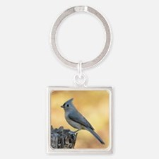 Tufted titmouse 2 Square Keychain