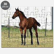 Geneva Cleveland Baby horse Puzzle