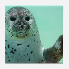 Seal20151102 Tile Coaster