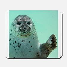 Seal20151102 Mousepad