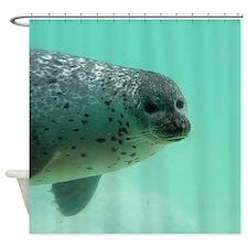 Unique Underwater Shower Curtain