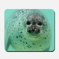 Seal20151105 Mousepad