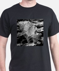 Arrowheads T-Shirt