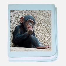 Chimpanzee003 baby blanket