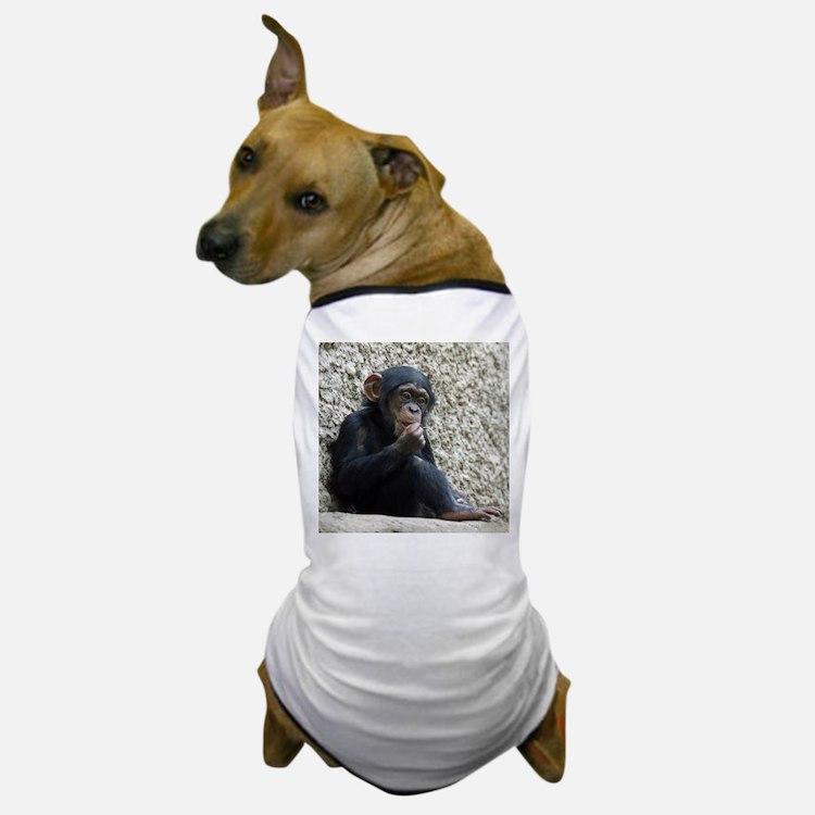 Chimpanzee003 Dog T-Shirt