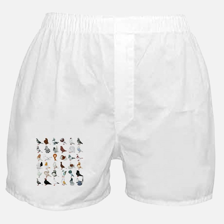 36 Pigeon Breeds Boxer Shorts