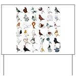 36 Pigeon Breeds Yard Sign
