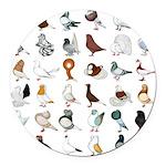 36 Pigeon Breeds Round Car Magnet