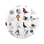 "36 Pigeon Breeds 3.5"" Button (100 Pack)"