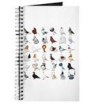 36 Pigeon Breeds Journal