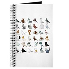 36 Pigeon Breeds Journal