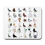 36 Pigeon Breeds Mousepad