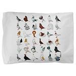 36 Pigeon Breeds Pillow Sham