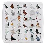 36 Pigeon Breeds Cube Ottoman