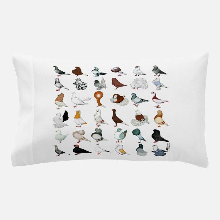 36 Pigeon Breeds Pillow Case