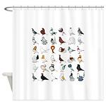 36 Pigeon Breeds Shower Curtain