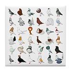 36 Pigeon Breeds Tile Coaster