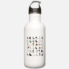 36 Pigeon Breeds Water Bottle