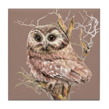Cute Little Owl in Tree Bird Nature Watercolor Til