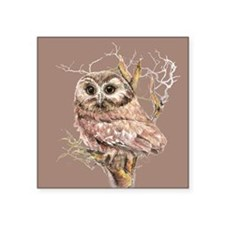 Cute Little Owl in Tree Bird Nature Watercolor Sti