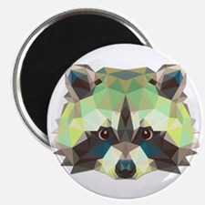 Racoon Magnets