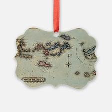 Cute Virgin islands Ornament