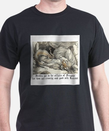 Cute Meddle not in the affairs of dragons T-Shirt