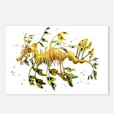 Unique Sea horse Postcards (Package of 8)