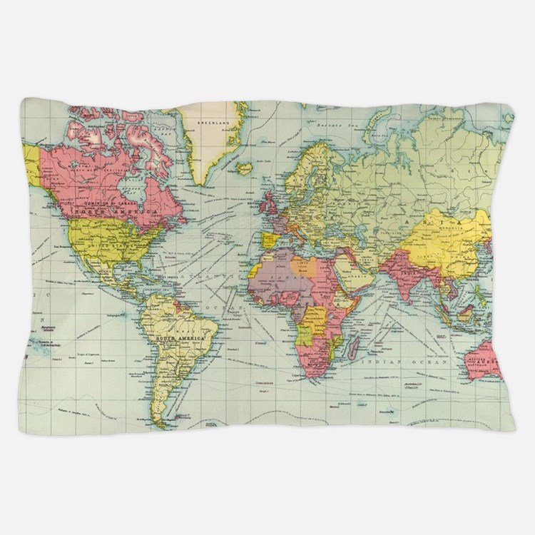 Cute Geography Pillow Case
