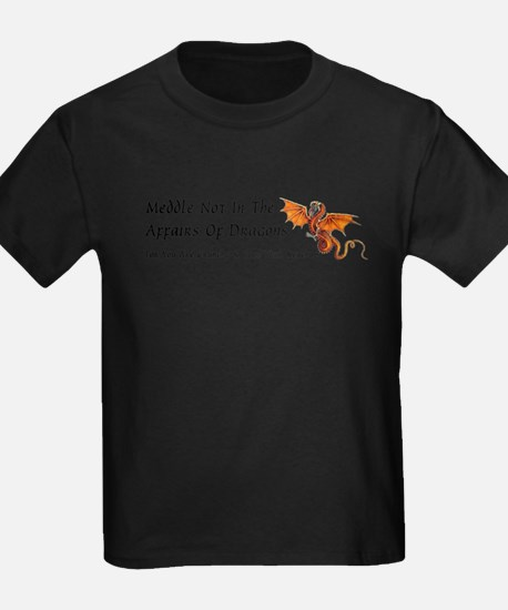 Funny Meddle not in the affairs of dragons T