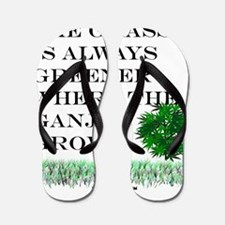 The Grass is Always Greener where the G Flip Flops