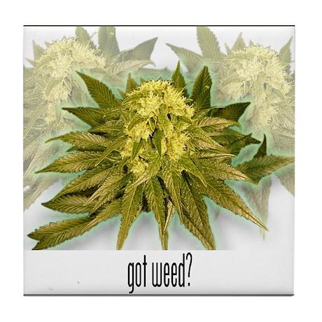 """Got Weed?"" Marijuana bud Tile Coaster"