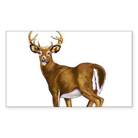 American White Tail Deer Buck Sticker (Rectangle)