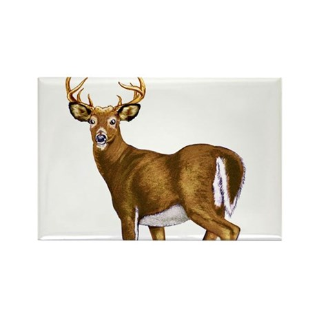 American White Tail Deer Buck Rectangle Magnet (10