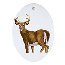 American White Tail Deer Buck Ornament (Oval)