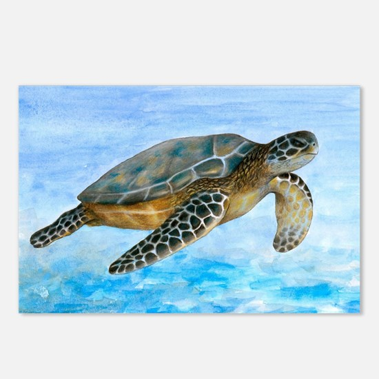 Turtle 1 Postcards (Package of 8)